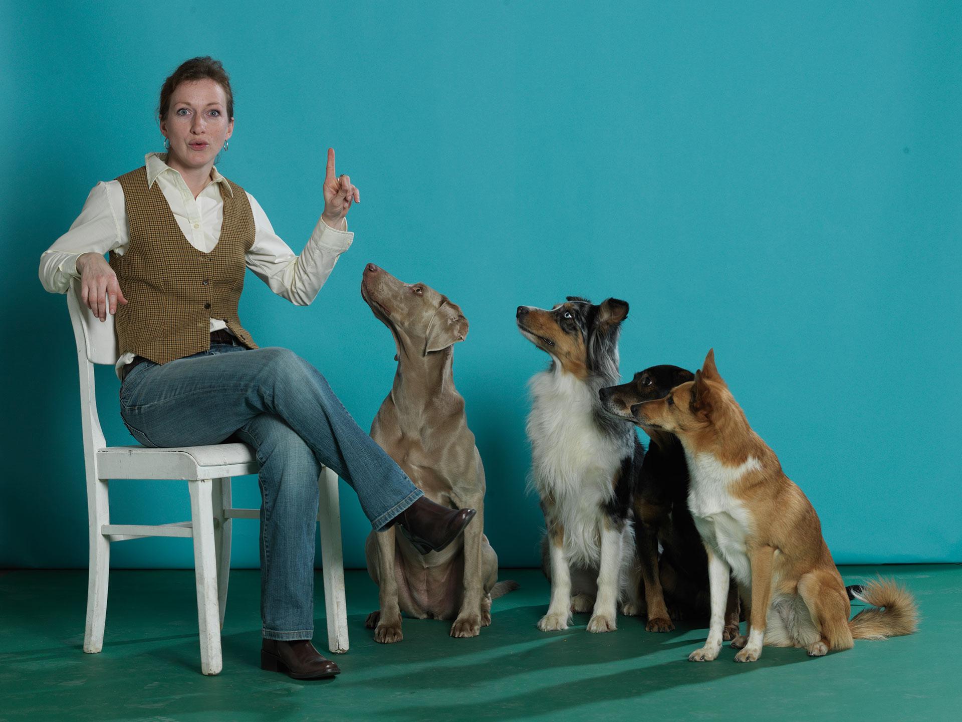 Chiara Stadthund Bremen