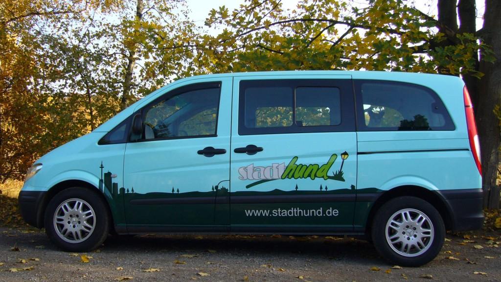 stadthund_bus